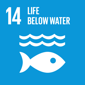 SDGs Goal 14: Conserve and sustainably use the oceans, seas and marine resources