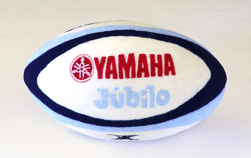 Rugby ball detail picture